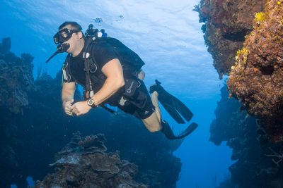 PADI Education at DNS Diving